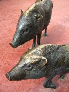 Javalinas at the Entrance© AME