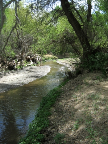 Santa Cruz River at Tucmacacori© SR Euston