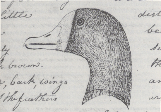 along western trails part the lewis and clark expedition  brant duck from the journals courtesy of the missouri historical sociey