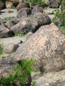 Petroglyphs © SR Euston